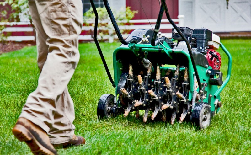 5 Tips to find the Best Lawn Aeration Services Near Me